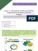 Tema 11 Circular Permutation_directed Evolution