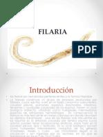 FILARIA