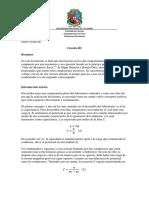 Circuito_RC.docx