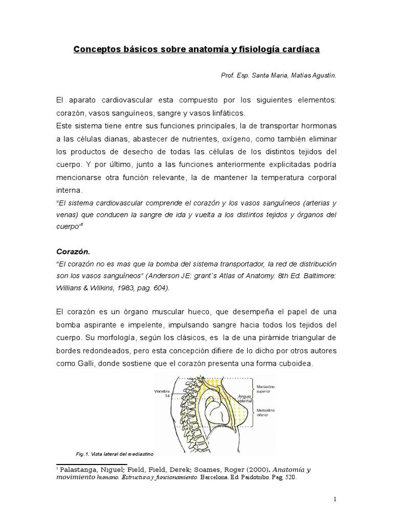 Hermosa Anatomía Y Fisiología Notas De Sangre Imágenes - Anatomía de ...