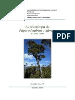 Autoecología de Pilgerodendron uviferum (D. Don) Florin