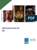 Perfiles Zonales 2009