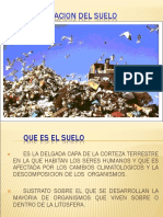5 SUELO Y  CONTAMINACION  DEL SUELO_2010.ppt