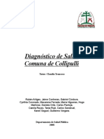 Diagnóstico Salud Collipulli 2008