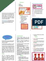 DIAGNOSTICO Triptico de Cancer Del Cuello Uterino