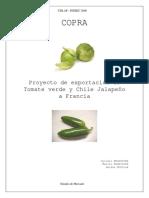 RAPPORT_MIE.pdf