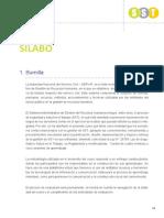 Silabo SST 2017