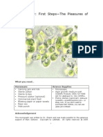 Algae Study & Cultivating ASA