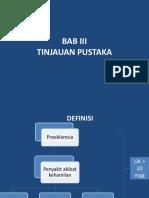 BAB III PEB