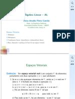 aula05_EspVet.pdf
