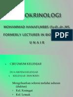 11 Endokrinologi.ppt