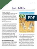 Soil Biota
