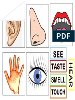 FIVE SENSES DOCUMENT.pdf