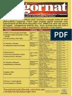 KSU AGGORNAT Poster full schedule