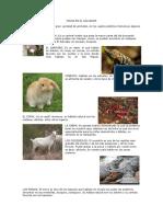 Fauna y Flora en El Salvador