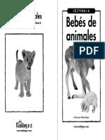 animales bebés.pdf