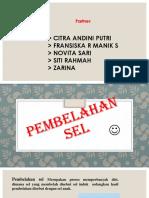 Powerpointbiologinovitasari 150514040615 Lva1 App6891