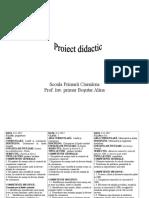 proiect_de_lectie_simultan