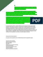 Documento MI EXPO