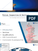 Falcon inspection  Presentation