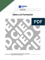 CIED PDVSA - Daño a la Formación.pdf
