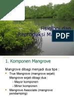 Fisiologi Dan Reproduksi Mangrove