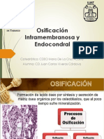 Osificación Intramembranosa, Endocondral y Sutural
