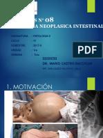 Práctica 8 - Patología Neoplásica Intestinal