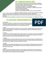 10 Plantas Medicinales y Plantas Ornamentales