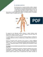 Informe Generalidades Sistema Linfático