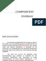 ENZIMAS_Y_VITAMINAS (1)