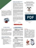 triptico AUD FIN.docx