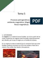 Amb. Magmatico