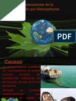 Causas y Consecuencias de La Contaminación Por Hidrocarburos