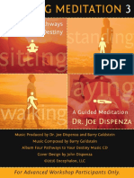 DR JOE_Vertical Walking Meditation 3_Instruction Booklet