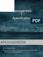 apexogenesisapexification-130802062951-phpapp02