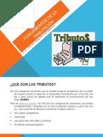 Fundamentos de la tributación.pptx