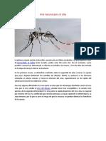 Una Vacuna Para El Zika