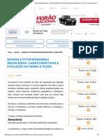 Biomas e Fitofisionomias Brasileiros_ Características e Evolução Da Fauna e Flora