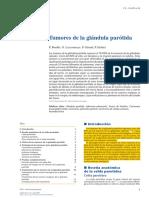 Tumores de La Glandula Parotida - 2017