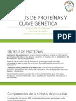 Síntesis de Proteínas y Clave Genética