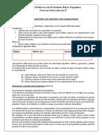 Carpeta didáctica Naturales 6.docx