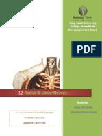 12-Radial & Ulnar Nerves