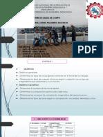 Diapos Petro Informe