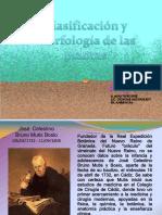 clasificacionymorfologiadelasplantas-130923204705-phpapp02