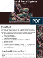 Renal Pathology Lectures_Ppt Series
