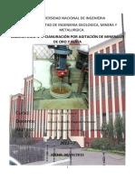 288406986-Primer-Informe-lixiviacion-de-oro-y-plata.docx