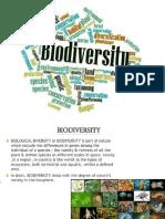Biodiversity Values 4-12-17