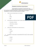 Dscargar_cuestionario estilos educativos.pdf