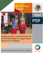 Manual STPS.pdf